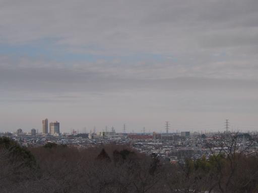 20140211・雪散歩空02(小手指)