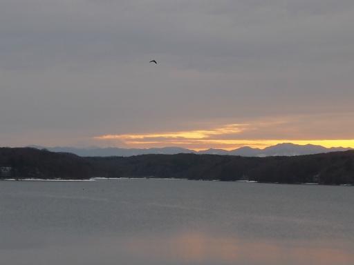 20140211・雪散歩空11(からすあり)