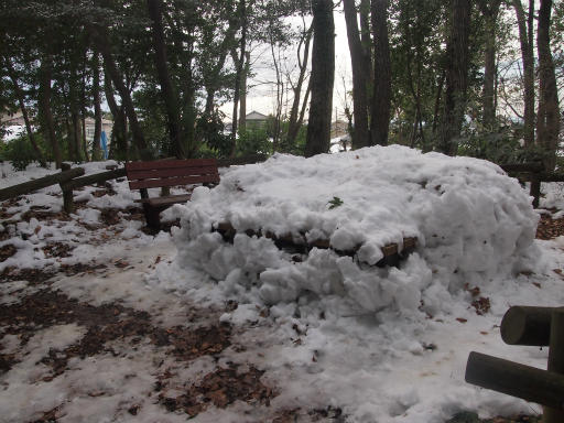 20140211・雪散歩1-18