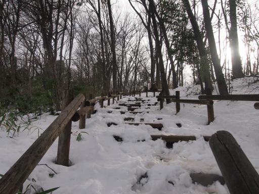 20140211・雪散歩1-16