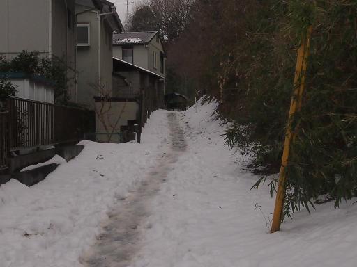 20140211・雪散歩1-14