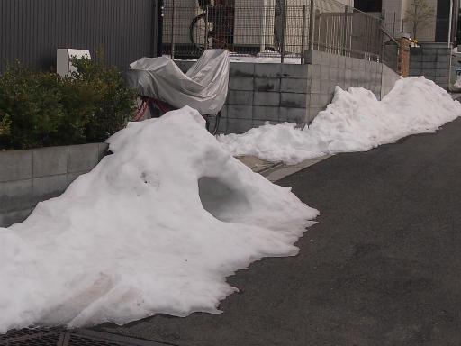20140211・雪散歩1-13