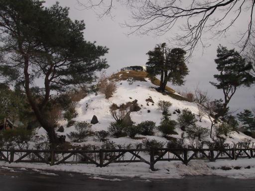 20140211・雪散歩1-19