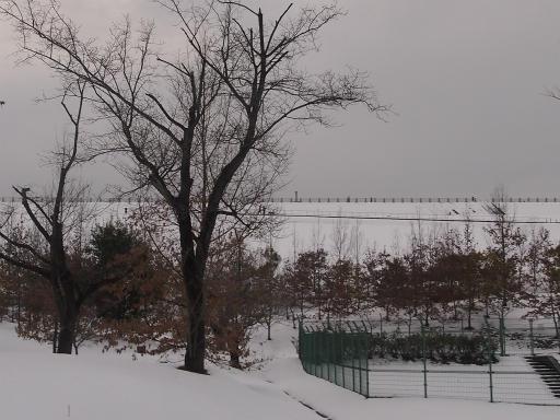 20140211・雪散歩2-16