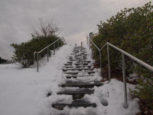 20140211・雪散歩2-18