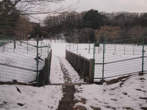 20140211・雪散歩2-14