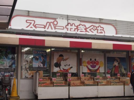 20140211・雪散歩ネオン10