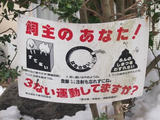 20140211・雪散歩ネオン07