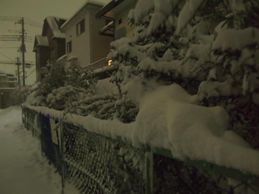 20140214・大雪12