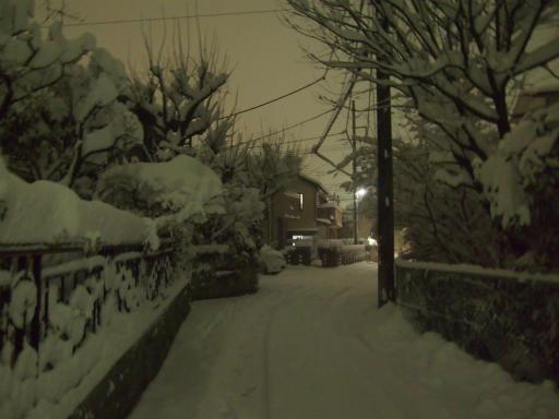 20140214・大雪08