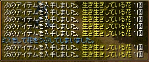 キャンピングマスター1-2