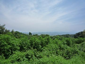 kyushusannti1.jpg