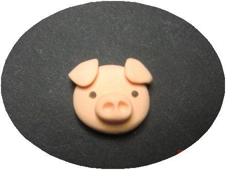 豚さんの整形1