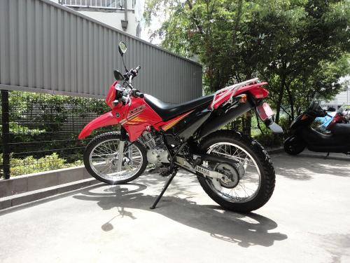 DSC06599.jpg