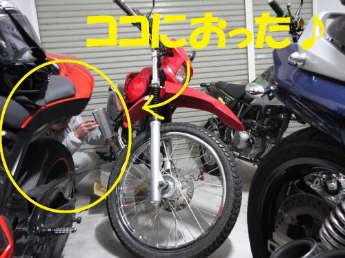 DSC07575.jpg
