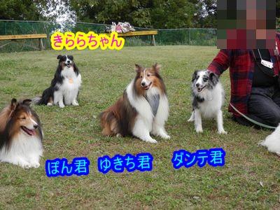きららちゃん 3