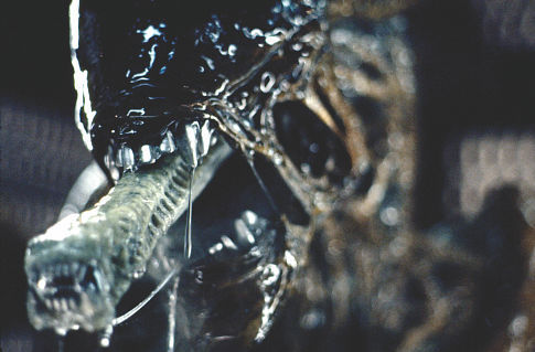 Alien-creature-1979.jpg