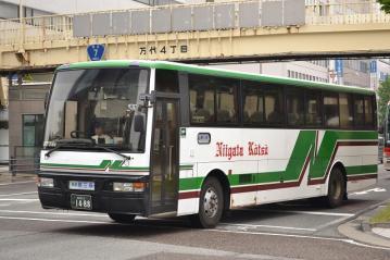 DSC_0078k.jpg