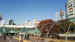 2014-11-14_01.jpg