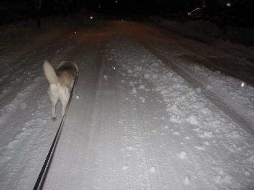 snow02034