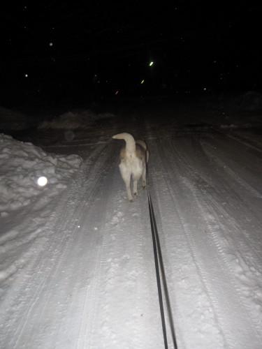 snow02032