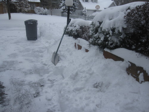 snow103