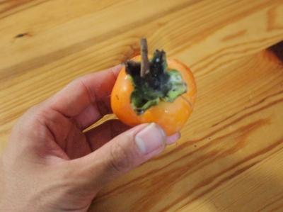 干し柿作り1310135