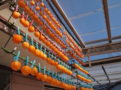 干し柿作り1310133