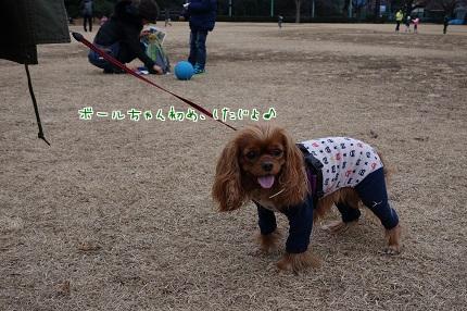 嵐丸 2014.1.7-20