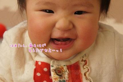 嵐丸 2014.1.20-11