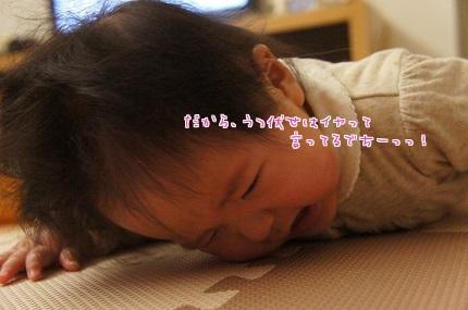 嵐丸 2014.1.20-7