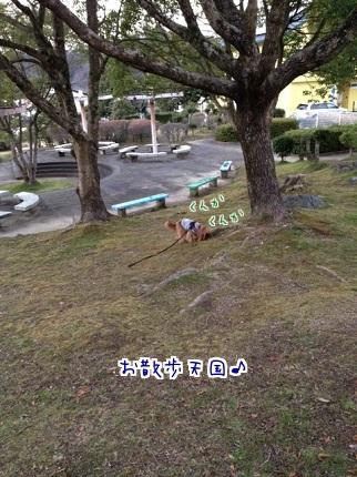 嵐丸 2014.1.22-4