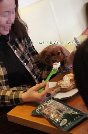 嵐丸 2014.1.31-10