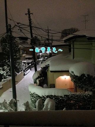 嵐丸 2014.2.15-6