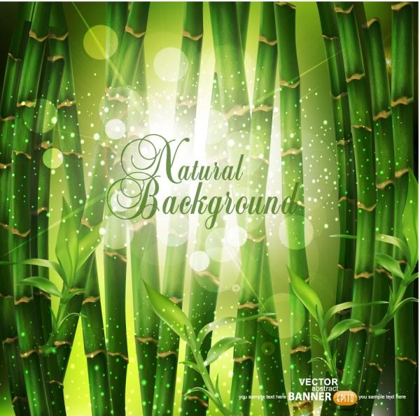 光溢れる竹林の背景 Green leaf Vector background