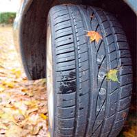 葉が付いたタイヤ