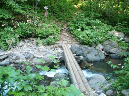去年より少しだけ立派になった橋?