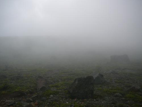 霧の中幻想的な雰囲気が素敵