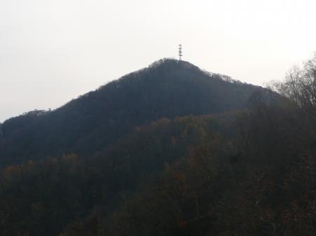 山頂が見えてきた!