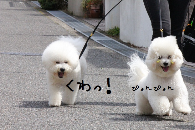 82_20130410001110.jpg