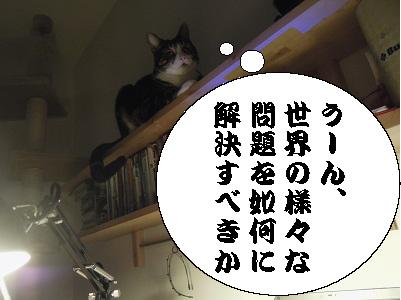 DSCN8128_1.jpg