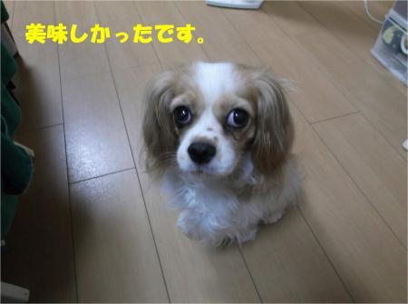 010_convert_20130619171320.jpg