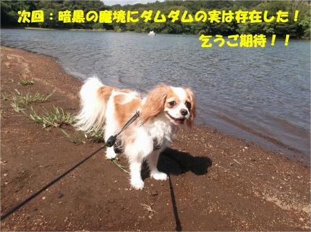 010_convert_20130923133441.jpg