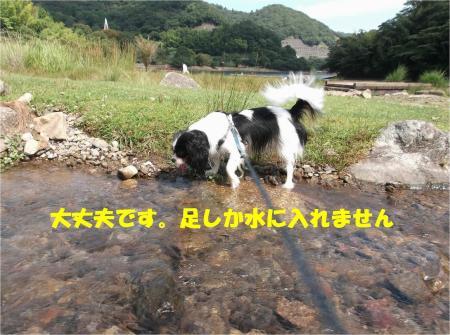 010_convert_20130924171505.jpg