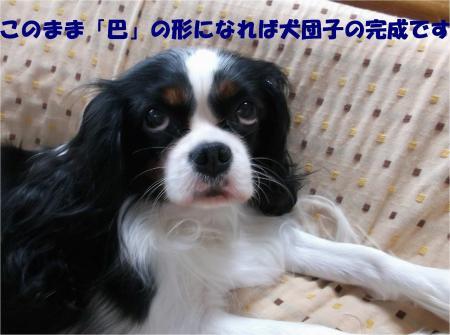 010_convert_20131023175913.jpg