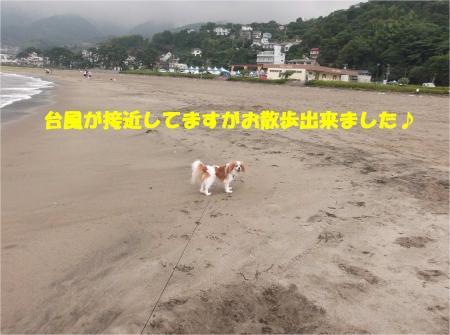 011_convert_20130917161551.jpg