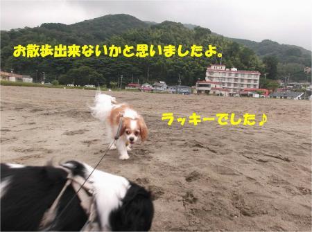 012_convert_20130917161603.jpg