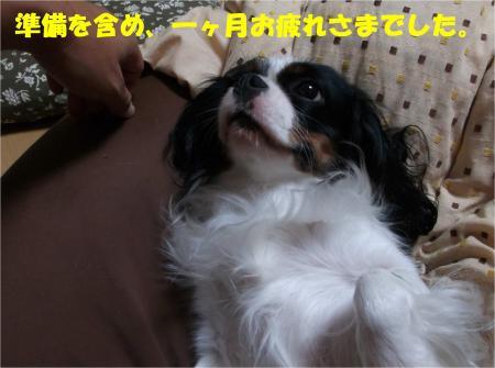 012_convert_20131022173527.jpg