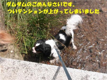 013_convert_20130924171531.jpg