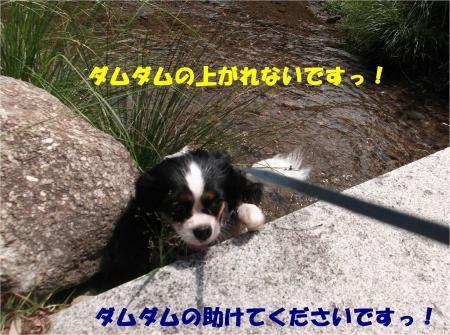 014_convert_20130924171543.jpg